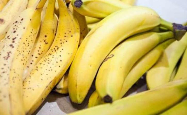 Kulit pisang banyak kegunaannya