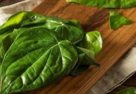 4 Obat herbal Gigi
